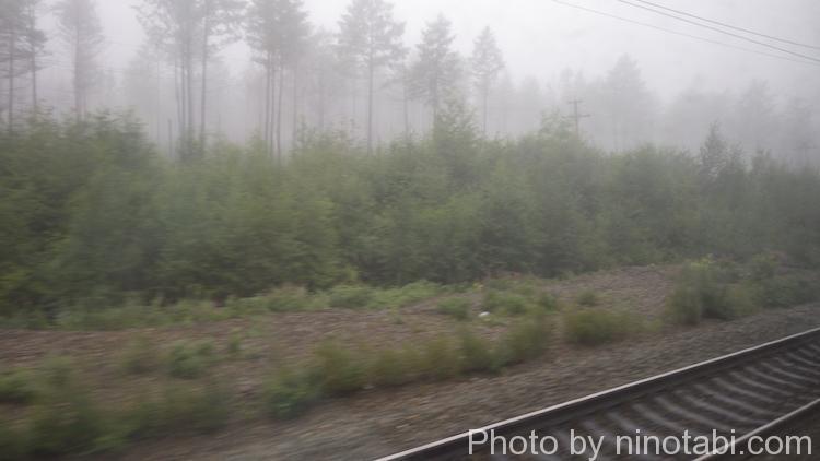 早朝の霧の中