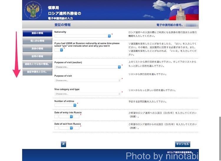 ロシア連邦外務省領事局査証専用サイト入力画面3