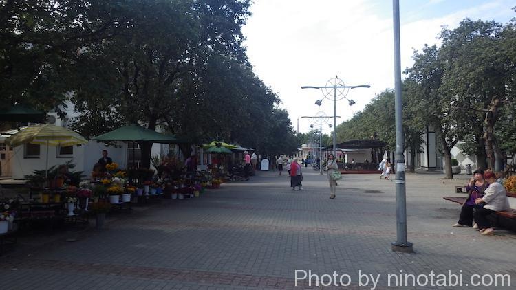 イェルガヴァの中心街
